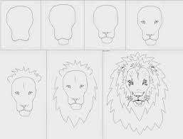 Draw Drawing Ideas For Art Class A Lion Cat