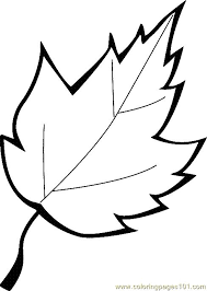 Leaf Coloring Page 13 Printable For Kids And Adults