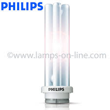 compact fluorescent light bulbs from general ls