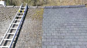 how to clean moss roof