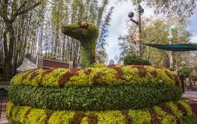 Busch Gardens Tampa Food & Wine Festival Gardening Masterpieces