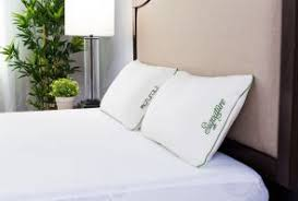 protect a bed allerzip smooth anti allergy and bug proof encasement