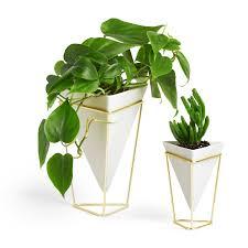 Fake Plants For The Bathroom by Amazon Com Umbra Trigg Desktop Planter Vase U0026 Geometric Container