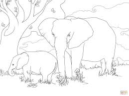 Click The African Bush Elephants Coloring Pages