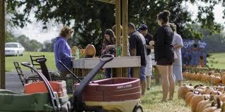 Boyd Tx Pumpkin Patch by Clarksville Pumpkin Patch Brings City Together As Halloween