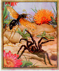 Poems About Halloween Night by Famous Poems About Spiders At Spiderzrule The Best Site In The