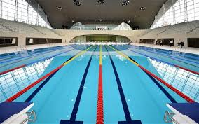 Olympic Swimming Pool Top View Desperately Seeking The Perfect Telegraph