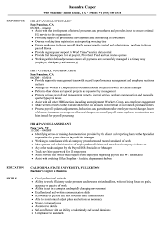 HR / Payroll Resume Samples | Velvet Jobs