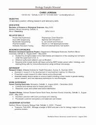 Resume Templates For Young Professionals Awesome Examples Adults