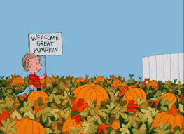 The Great Pumpkin Patch Pueblo Colorado by 10 Reasons Why Fall Is The Best Season Of The Year Missmuslim