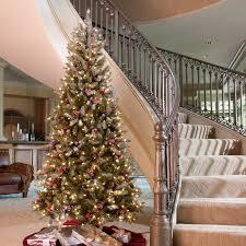 Downswept Slim Christmas Tree by Snowy Dunhill Slim Pre Lit Christmas Tree Hayneedle