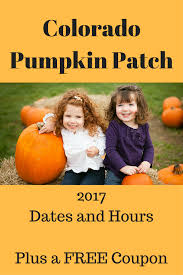 Denver Area Pumpkin Patches by Colorado Pumpkin Patch Is Back At A New Location Coupon