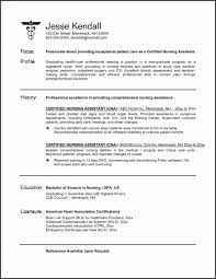 Resume Templates Nursing Samples New Professional Job Template Od