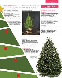 Types Of Christmas Tree Leaves by Southside Dec 2016 By Hong Kong Living Ltd Issuu