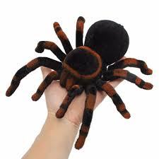 Remote Control Spider Scary Prank Realistic Tarantula Creepy ... Does Anyone Else Like Cars Tarantula Forum The Setup That All The Tech Obssed Nerds Are Using Shark Wheels High Quality Rc Quadcopter Upper Body Cover Shell Accessory Yizhan Pin By Chris On Trucks Pinterest Rigs Peterbilt Indiana Man Warns Locals To Beware Of Giant Spiders After Spotting Dead Thejournalie Victor Ehart Youtube Kids Tour Mexican Stock Photos Images Alamy Wall Vinyl Decal Sticker Animals Insect Spider Art Deepfried Tarantula Allegations Deliciousness