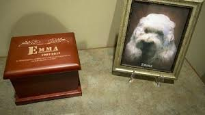 Funeral home offers services for 4 legged family members  Animal