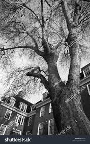 100 Kensington Church London Walk UK Stock Photo Edit Now 97933
