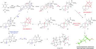 Cyclohexane Chair Conformation Model Kit by Asperterpenes A And B Two Unprecedented Meroterpenoids From