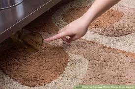 How To Fix Bleach Stains On Carpet by 3 Ways To Remove Water Stains From Carpet Wikihow