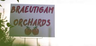Pumpkin Farms In Belleville Illinois by Braeutigam Orchards Family Owned Since 1831