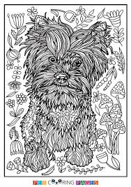 Free Printable Yorkshire Terrier Coloring Page Available For Download Simple And Detailed Versions Adults