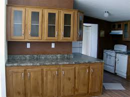 20 Great Image Of Replacement Kitchen Cabinets For Mobile Homes ... Kitchen Breathtaking Cool Tiny Floor Plans Appealing Renovating Ideas Remodeling Before And After Tray Ceiling Mobile Home Layout Modular Designs In India Best Fresh Cabinets Taste Design Open With Living Room Interior Fniture Affordable Pictures Of Remodeled Kitchens Galley Remodel Ironwood Homes For Sale Lake City Fl Idolza Kitchen Graceful Favored Split Level Photos Beautiful Decorating