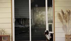 Dog Doors For Glass Patio Doors by Sunniness Metal Security Gates For Homes Tags Metal Door Gate