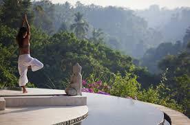 100 Viceroy Villa Bali Ubud Hotel And
