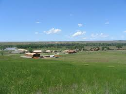 Ergle Christmas Tree Farm by Luxury Ranch Real Estate Ranches For Sale