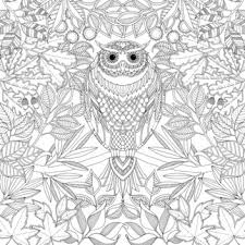 The 1 Best Selling Book In America Right Now Is An Adult Coloring