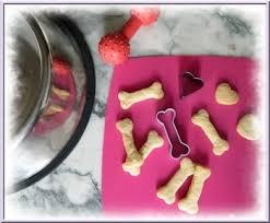cuisiner pour chien cuisiner pour chien biscuits gâteaux pâtée