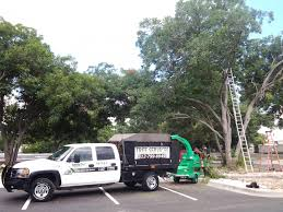 Light Duty Chipper/Dump Truck. 06 GMC Sierra 2500HD With Tool ... Chip Trucks Archive The 1 Arborist Tree Climbing Forum Bar Copma 140 And 3 Trucks For Sale Buzzboard For Sale 2006 Gmc C6500 Alinum Chipper Truck Youtube 2015 Peterbilt 337 Dump Trucks Are Us Hire In Virginia Used On Buyllsearch 2018 New Hino 338 14ft At Industrial Power Ford F350 Work West Gmc Illinois Cat Diesel F750 Bucket Trimming With