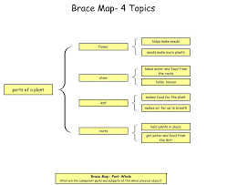 Brace Map Template By Bishop S Blackboard An Elementary Education Plant
