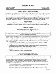 Sample Resume For Telecom Manager Beautiful 18 Project Summary Statement