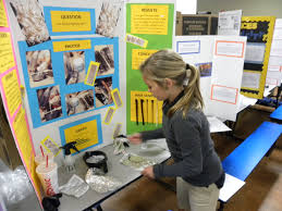 ACE 5th And 6th Graders Showed Off Their Science Projects At The Fair