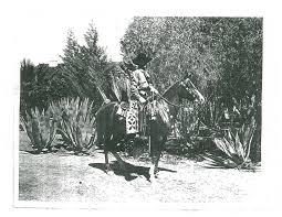 Spirit Halloween Locations Tucson 2015 by Preservation Activists Fault The Arizona Inn The Range The