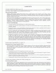 CEO Or Executive Resume