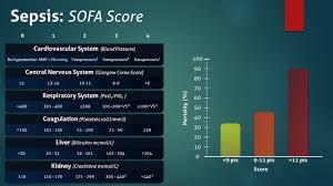Sofa Sepsis Pdf 2016 by Sofa Score Sepsis Rooms