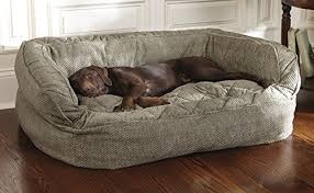 Petco Dog Beds by Amazon Com Orvis Lounger Deep Dish Dog Bed Medium Dogs Up To