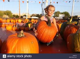 Napa Pumpkin Patch by American Canyon Ca Usa 16th Oct 2015 Bella Parker Tries To