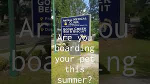 boarding at goose creek bed and biscuit youtube
