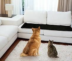cat sofa cat proof and sofa protectors 2017 update the sleep studies