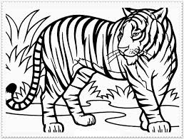 60 Tiger Shape Templates Crafts Colouring Pages