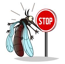 mückenschutz tipps und tricks gegen mücken und juckreiz