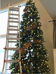 Hobby Lobby Pre Lit Christmas Trees Instructions by Classy 12ft Christmas Tree Plain Design Pre Lit Trees Artificial