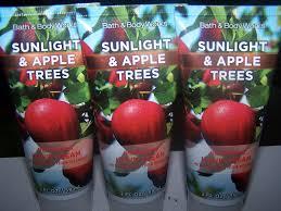 Bath And Body Works Pumpkin Apple by Amazon Com Lot Of 3 Bath U0026 Body Works Sunlight U0026 Apple Trees