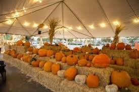 Clovis Ca Pumpkin Patch 2015 by Fall Season Offers Family Friend Oriented Activities The