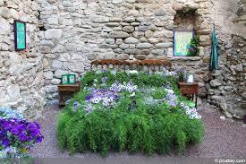 pflanzen im schlafzimmer gesund oder schädlich 11 ideale