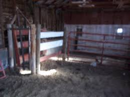 Homesteading Wife: Ranch Tour - Part 4 The Barns Around The Farm Scissors Creek Cattle Company The Beutler Family Bench Design Hay Barn Plans Shed Heifer Development Way View Onduty Horse Csavvycom We Know Working Horses Katefairlie Kate Fairlie Kims County Line Cribs Aka Sheds Enduragate Setup Demstration For Calving Youtube Portable Calving Beef Facilities Pinterest Barn 332014 Calving2014 January 2014 Life On A Bc Ranch Slate Architecture Boots Heels Renovated Area
