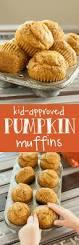 Cake Mix And Pumpkin Muffin Recipe by Best 25 Healthy Pumpkin Muffins Ideas On Pinterest Pumpkin